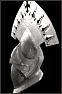 dark_silver_helmet.jpg